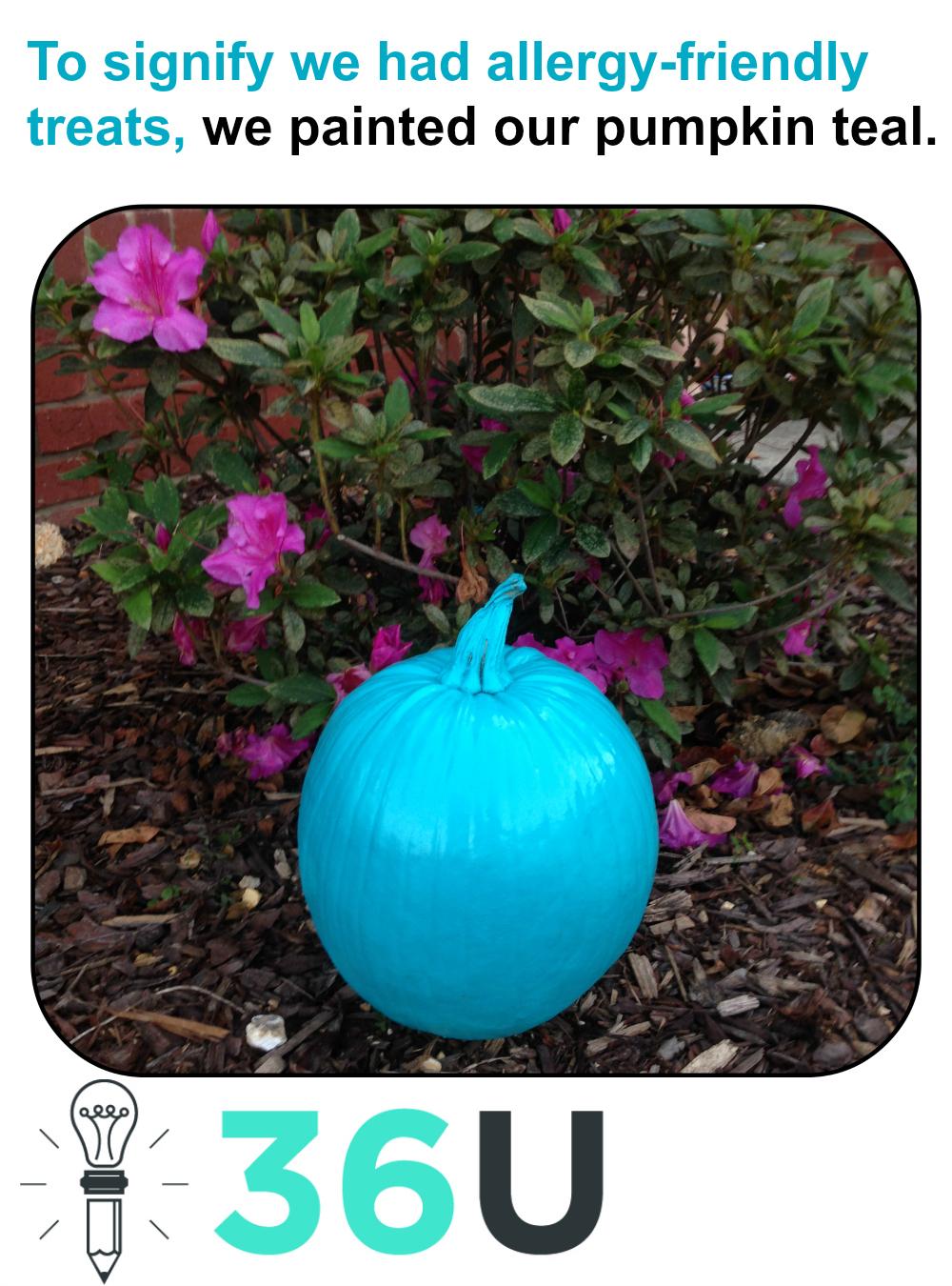 teal pumpkin (M)