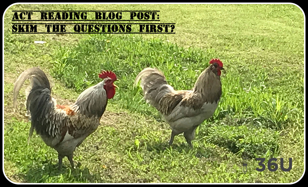 act prep reading skim the questions first illustration with roosters